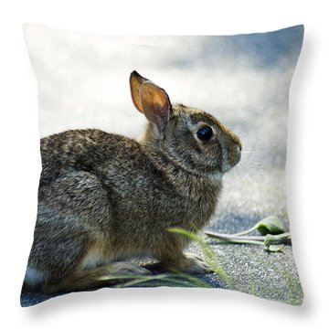 Throw Pillow featuring the photograph Rabbit by Yulia Kazansky