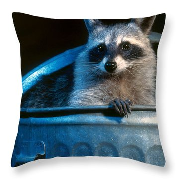 Raccoon In Garbage Can Throw Pillow