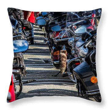 Throw Pillow featuring the photograph Raccoon Tail by Eleanor Abramson