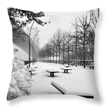 Race Street Pier - Snow Covered Throw Pillow