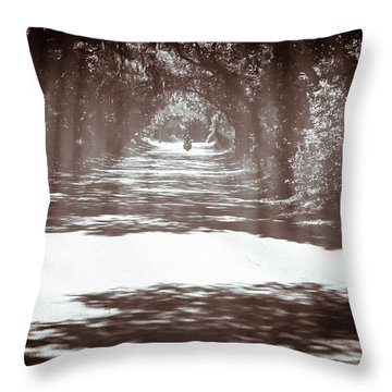 Racin The Wind Chasin The Sun Throw Pillow by Wade Brooks