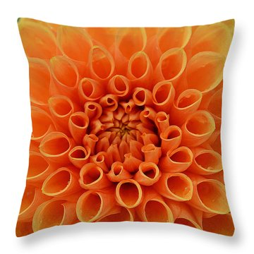 Radiant Throw Pillow by Felicia Tica