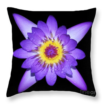 Radiant Throw Pillow by Judy Whitton