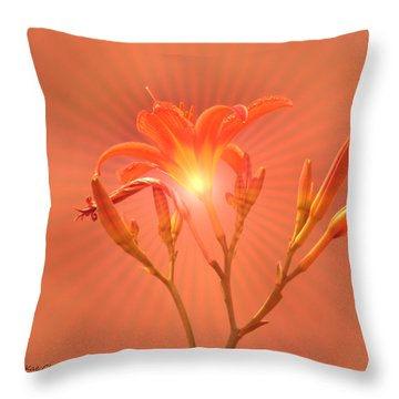 Radiant Square Day Lily Throw Pillow