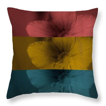 Radio Free Europe Throw Pillow by Holley Jacobs