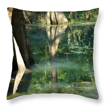 Radium Springs Creek In The Summertime Throw Pillow by Kim Pate