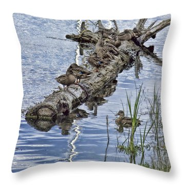 Raft Of Ducks Throw Pillow
