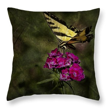 Throw Pillow featuring the photograph Ragged Wings by Belinda Greb