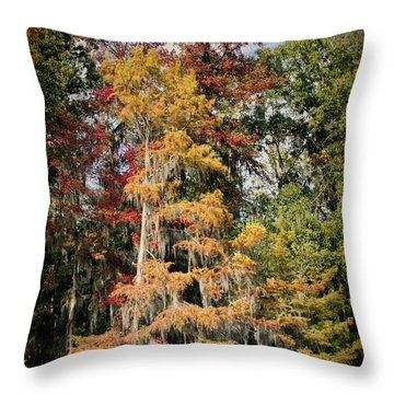Raggedy Bayou Throw Pillow by Lana Trussell