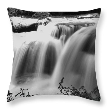 Raging Waters Throw Pillow by Melissa Petrey