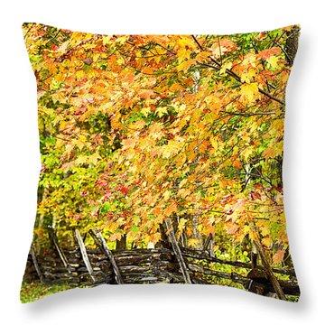 Rail Fence Fall Color Throw Pillow by Thomas R Fletcher