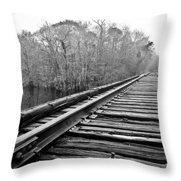 Rails Over Water Throw Pillow