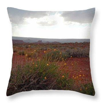 Rain At Monument Valley Throw Pillow by Heather Coen