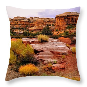 Rain At The Needles District 2 Throw Pillow by Marty Koch