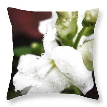 Snap Dragons Throw Pillows