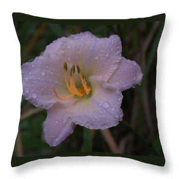 Rain Daylilly 2 Throw Pillow