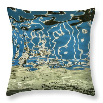 Throw Pillow featuring the photograph Rain Dreams by Terry Rowe