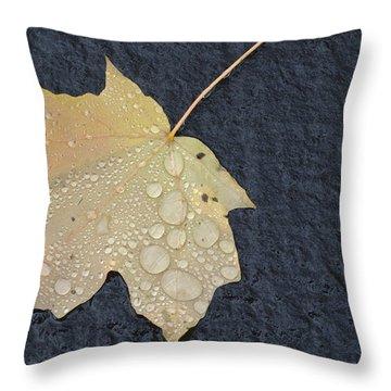 Rain Drops On A Yellow Maple Leaf Throw Pillow