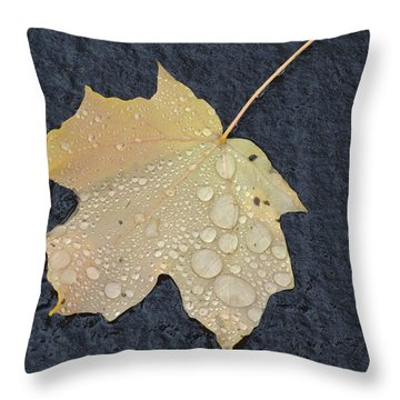 Rain Drops On A Yellow Maple Leaf Throw Pillow