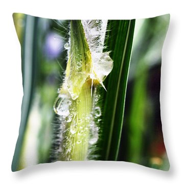 Rain Drops On Blades Throw Pillow