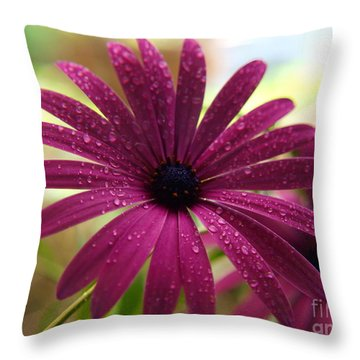 Throw Pillow featuring the photograph Rain Drops by Trena Mara