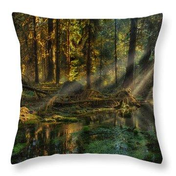 Rain Forest Sunbeams Throw Pillow