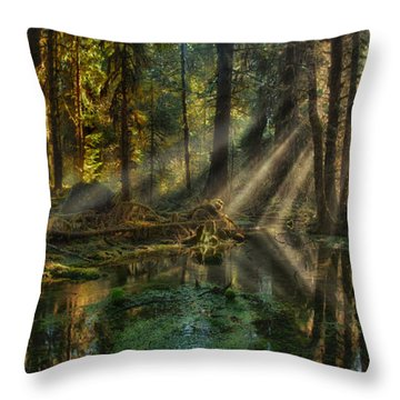 Rain Forest Sunbeams Throw Pillow