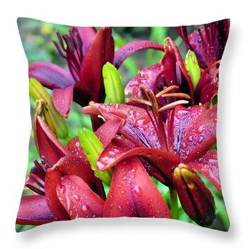 Throw Pillow featuring the photograph Rain-kissed Lilies by Janice Drew