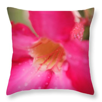 Throw Pillow featuring the photograph Rain Season by Miguel Winterpacht