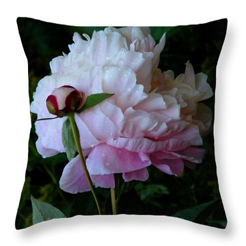 Rain-soaked Peonies Throw Pillow