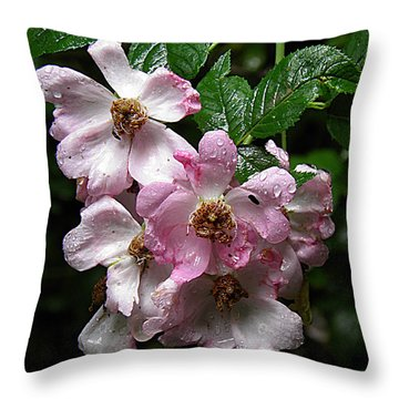 Rain Soaked Rose Throw Pillow by Nick Kirby