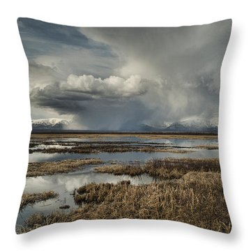 Rain Storm Throw Pillow