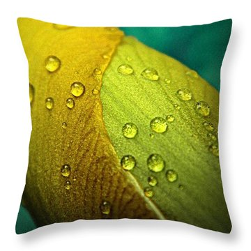 Rain Wrapped Throw Pillow