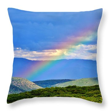 Rainbow Above The Canyon Throw Pillow by Janice Rae Pariza