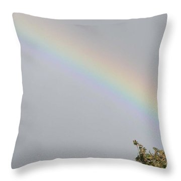 Throw Pillow featuring the photograph Rainbow After The Rain by Barbara Griffin