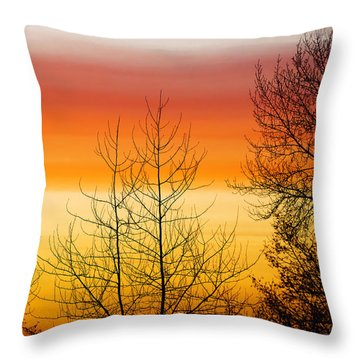 Rainbow Colored Sunset 2 Throw Pillow by MaryJane Armstrong