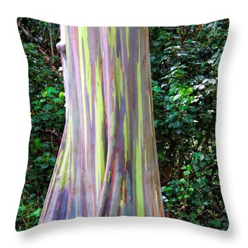 Rainbow Eucalyptus 3 Throw Pillow