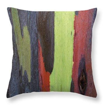 Rainbow Eucalyptus Tree Bark V I Throw Pillow