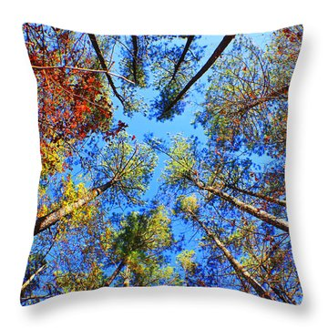 Rainbow Fall Throw Pillow