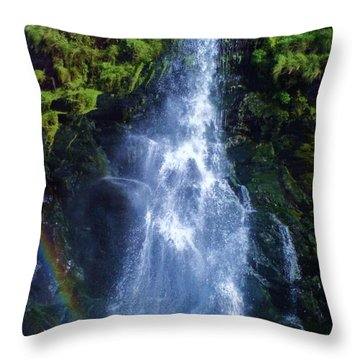 Throw Pillow featuring the photograph Rainbow Falls by John Williams