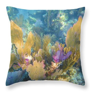 Rainbow Forest Throw Pillow by Adam Jewell