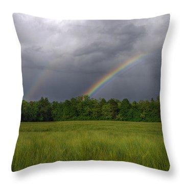 Rainbow Throw Pillow by Ivan Slosar