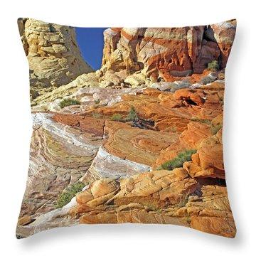 Rainbow Land Throw Pillow