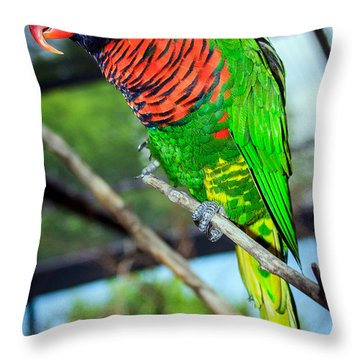 Throw Pillow featuring the photograph Rainbow Lory by Sennie Pierson