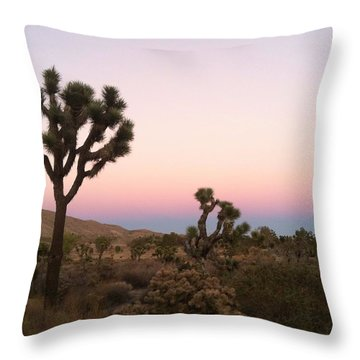 Rainbow Morning Throw Pillow by Angela J Wright