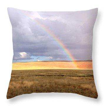 Rainbow Over Sossulvei Throw Pillow
