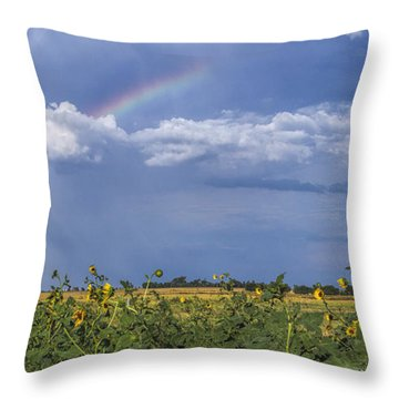 Rainbow Over Sunflowers Throw Pillow by Rob Graham