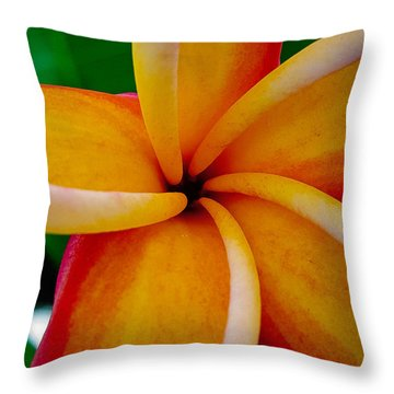 Rainbow Plumeria Throw Pillow by TK Goforth