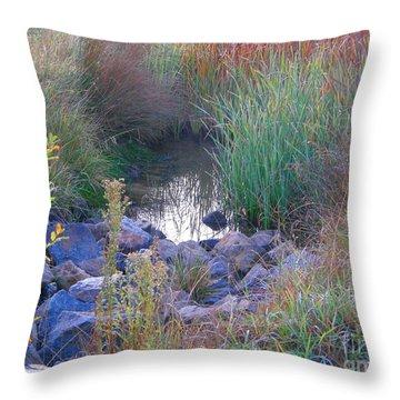 Rainbow Pond Throw Pillow