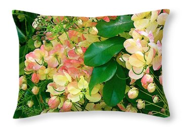 Rainbow Shower Tree Throw Pillow by James Temple